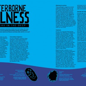 Honorable Mention | Caleb Hammontree | VISC 217 Graphic Design II	| megaZINE 2-page Spread