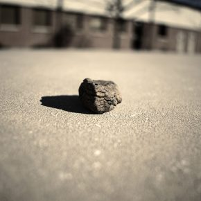 Honorable Mention | Zachary Allen | PHOT 104 Basic Photography | Depth of Field